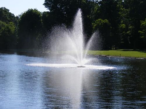 fountain river albion