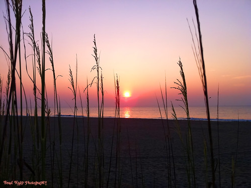 weather sunrisesunsetsceniccloudsbeach oceanseabeachseashellsphotographynature