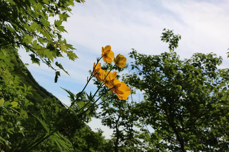 2014-07-22_03218_北海道登山旅行.jpg