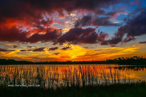 sun set sunset grass pond water clouds cloudy sky reflection reflect nature mothernature outdoors outside landscape weather