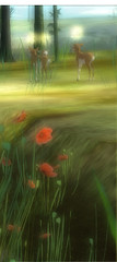 Poppies and Fawns