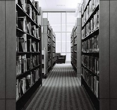 The Shelves | by greeblie