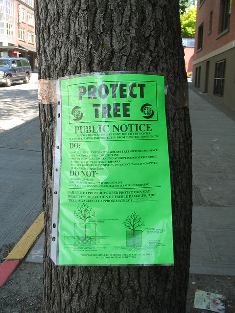 Protect Tree Public Notice