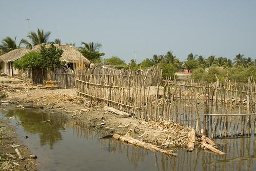 IMG_0187 terraplenes sobre manglar | by °°°paula°°°