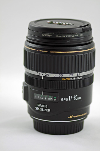 Canon EFS 17-85mm Macro 0.35m 1.2 ft | by Stacey Warnke Photography