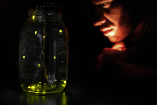 255/365 - capturing light in jar. | by B Rosen