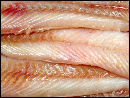 Fischfleisch