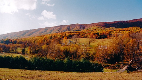 film skyline forest mountains trees sky outdoor nature landscape historic evening closeup clear autumn afternoon 1999 family architecture augustacounty woods presbyterian tree virginia scanned church churches day grouped