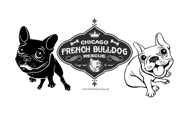 For Chicago Frenchie Rescue | www frenchieporvous org | Flickr