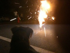 Fireworks dc style: up close and damn personal | by Wayan Vota