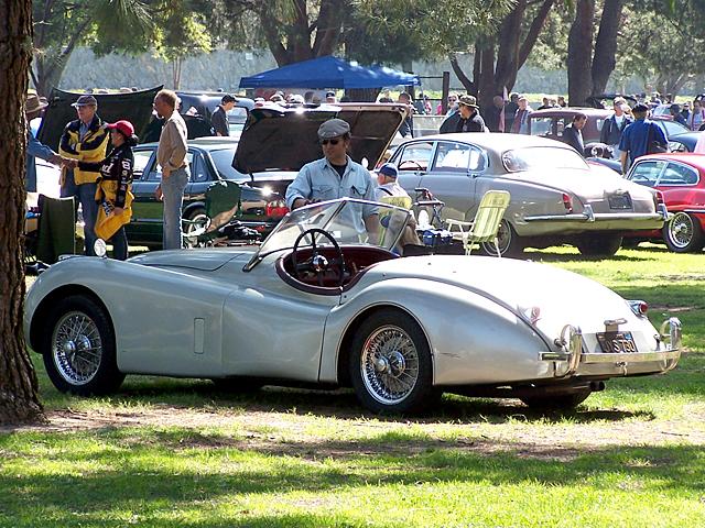 Jag roadster 6