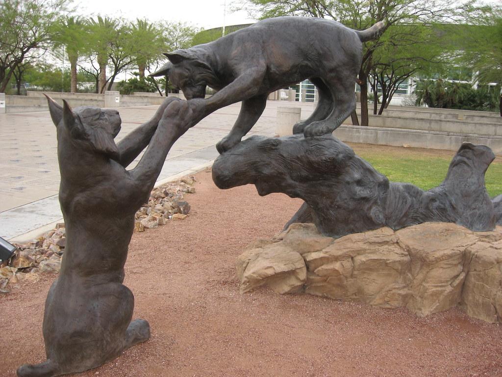 Wildcats Statue, University of Arizona | McKale Memorial Cen
