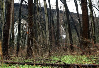 Thomas Viaduct through the Trees (Elkridge, MD) | by takomabibelot