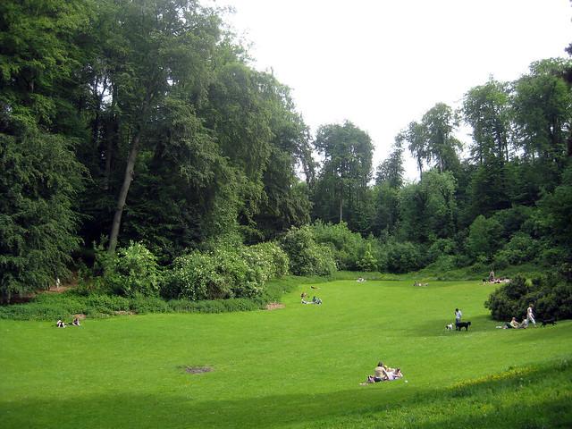 Dudenpark, Vorst