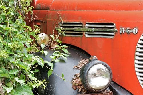 truck canon antique newhampshire places nh mack hillsboro kemps reospeedwagon 50d ef70200mmf4lisusm