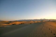 Death Valley National Park-394 | by Steve's Web Hosting