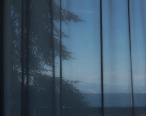sea color tree window monochrome canon eos hotel meer view mark fenster room iii curtain 5d monochrom dslr farbe baum blick opatija vorhang canoneos5d canoneos5dmarkiii