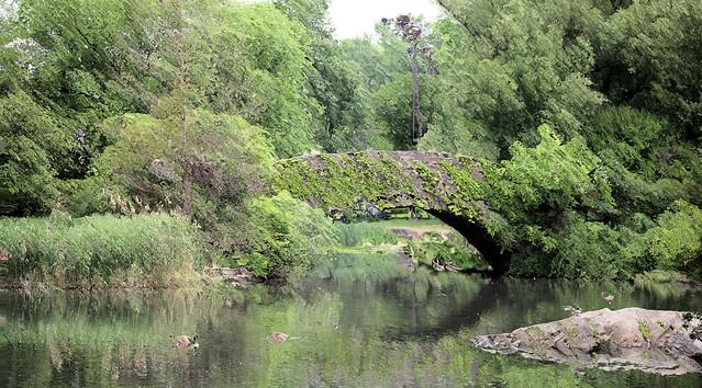 Impressionist Pond