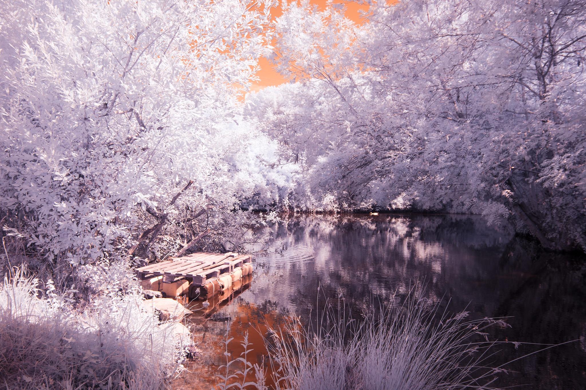 Pond & Raft