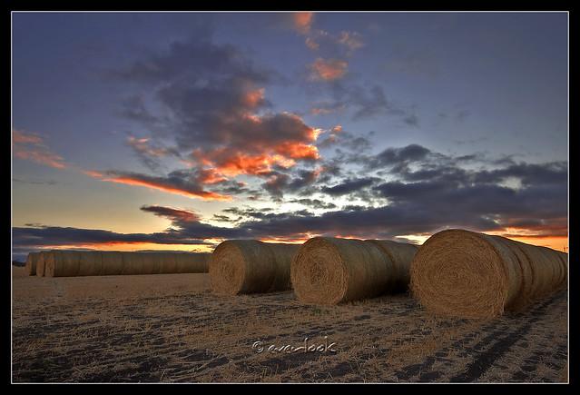 Sunset strips