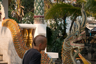 Dragon in Chiang Mai | by Christian Haugen