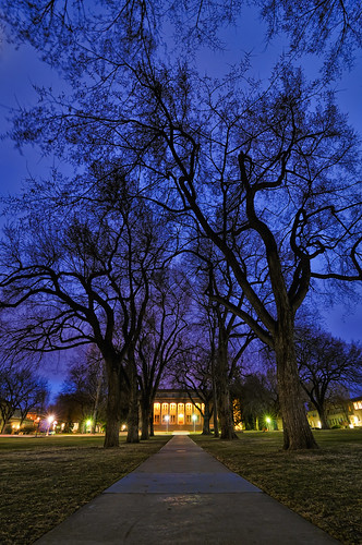 blue college night landscape evening vanishingpoint nikon colorado university fort dusk path indigo fortcollins tunnel hour co moonlight elm collins 2009 oval csu elms d300 catchycolorsblue coloradostateuniversity clff tokina1116