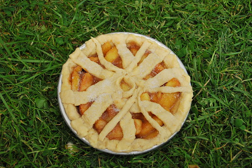 Bicycle Wheel Pie: Unbaked | by goingslowly