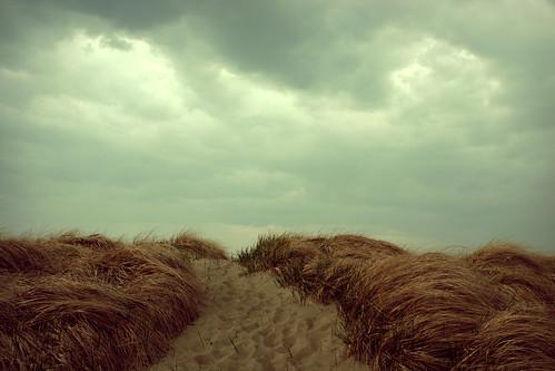 sky newyork beach grass clouds landscape sand windy irving sunsetbay