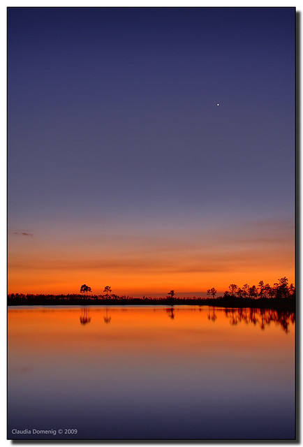 Venus ~ Evening Star by Fraggle Red