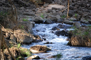 Mouth of Mzima Springs, Tsavo West | by otherpaths
