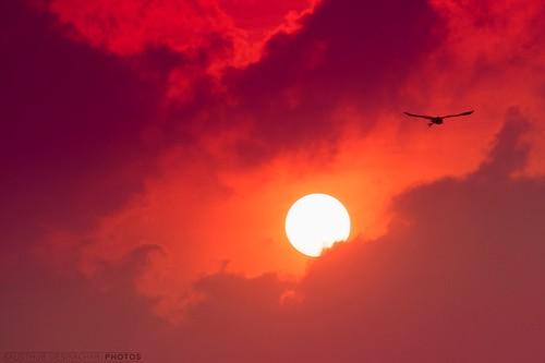 sky sun moon raw soe iphotooriginal supershot theunforgettablepictures theperfectphotographer rubyphotographer alemdagqualityonlyclub goldenheartaward