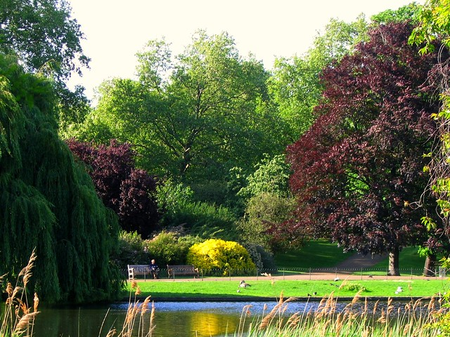London's St James Park on a May Afternoon
