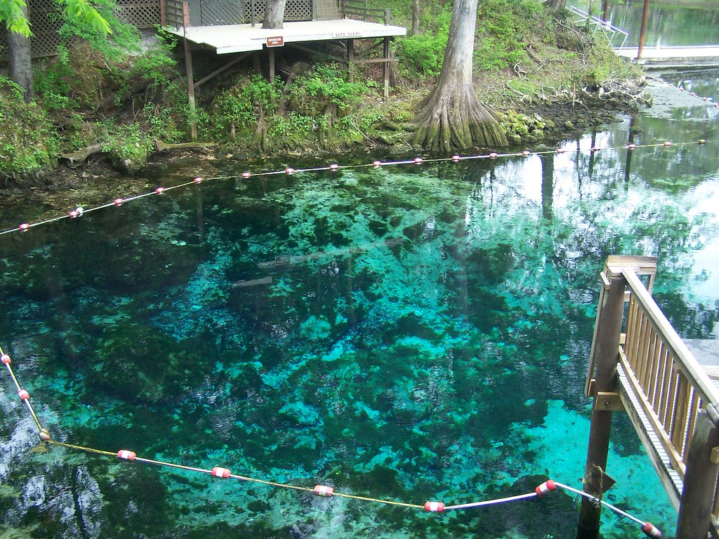 Fanning Springs State Park (Levy County, FL)