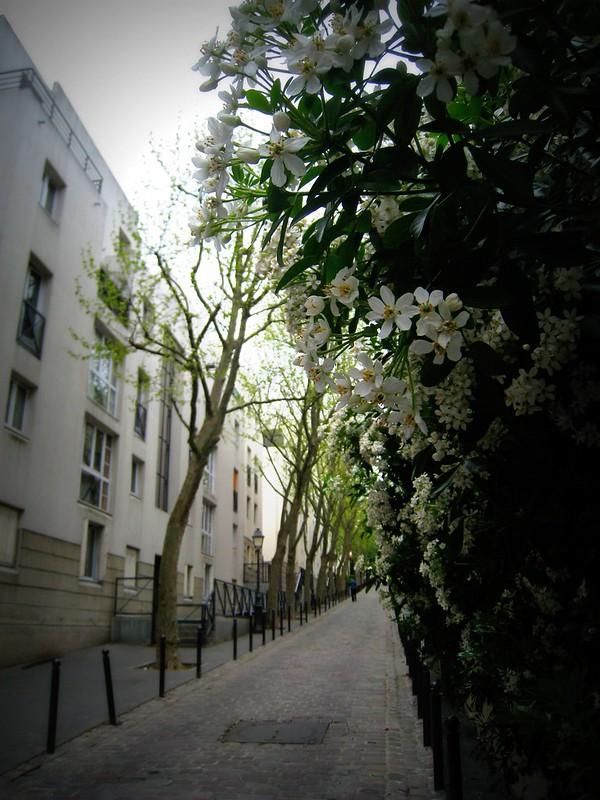 Passage Gambetta
