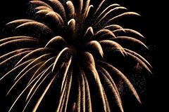 Freedom Festival Fireworks 2009 | by Aaron Barker