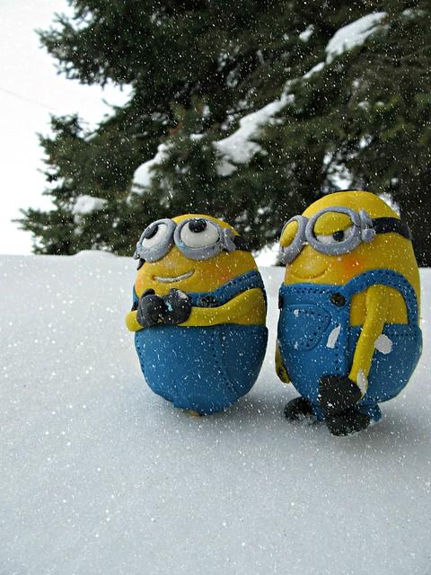 Snow Fans