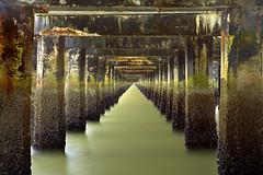 Under the Berkeley Pier | by PatrickSmithPhotography