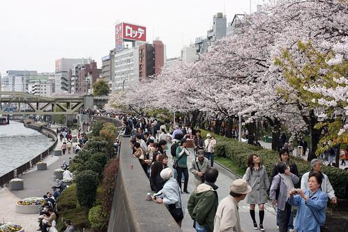 Sumida Park | by kadluba