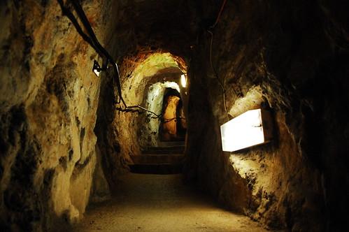 Giant's Cave Walkway in Bristol