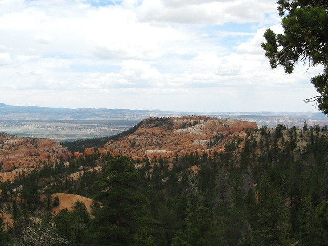 Along the Rim Trail near our campsite at Bryce