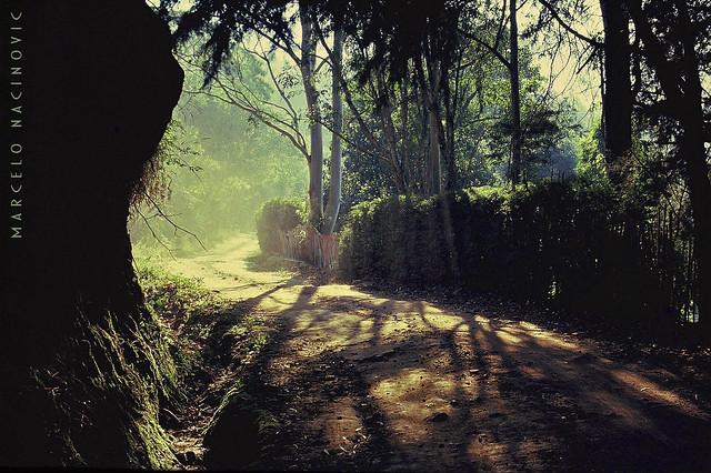 Caminho em Teresópolis