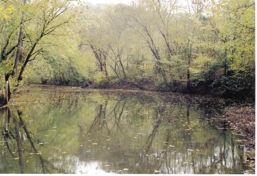 red bird river claycountyky redbirdriver