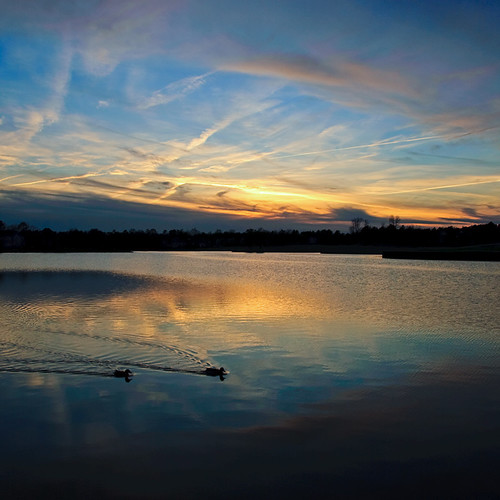 sunset lake swim virginia ducks wyndham skynoir bybilldickinsonskynoircom