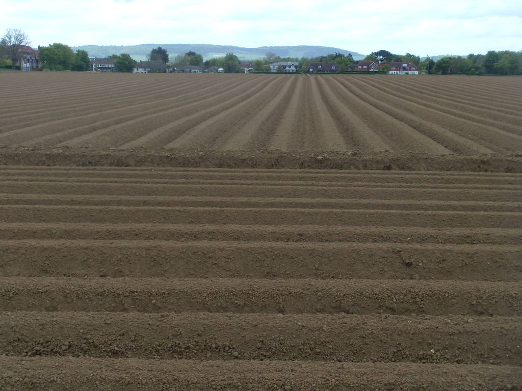 Ploughing Southbourne to Chichester