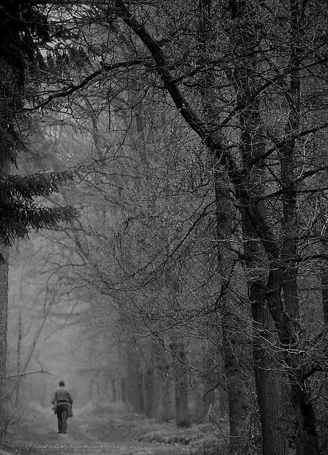 lonesome (explore)