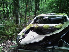 Found Off Road Dead