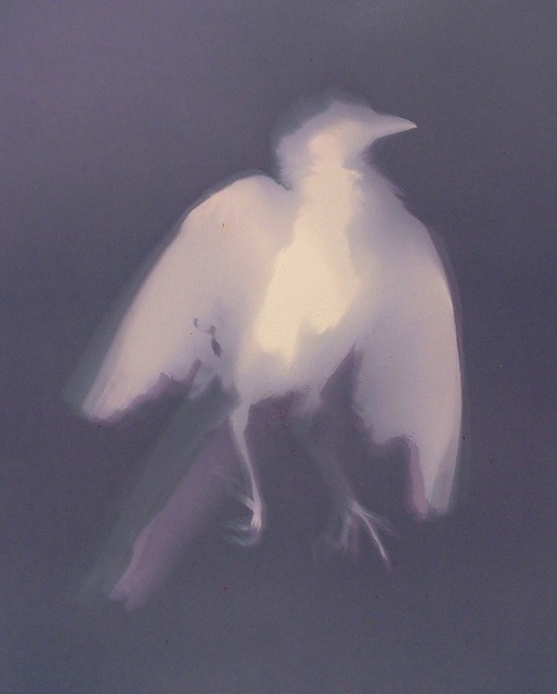 Lumen Print 109 Ghost Grackle 2 by John Fobes: copyrighted all rights reserved