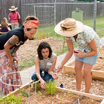 Open Plate: CAFB Teaching Garden Party
