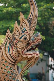 Dragon in Chiang Mai   by Christian Haugen