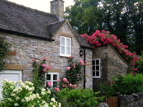 Cottage with Roses in the Village of Thorpe on the Tissington Trail in Derbyshire